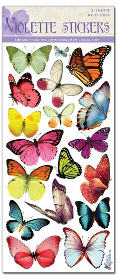C47-Pastel Butterflies