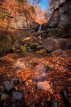 Lori Rocks.- The 30 Most Beautiful Nature Photography