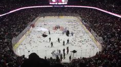 """Watch the video Moment 28K+ teddy bears are thrown onto hockey rink on Yahoo Yahoo. A bizarre video has emerged showing more than 28,000 teddy bears being thrown onto the ice during a Canadian junior hockey match on Sunday. The filmer wrote online: """"Each year, the Calgary Hitmen Junior Hockey team hosts a Teddy Bear Toss to collect stuffed animals to give to local charities and sick kids in hospitals. At the first goal by the Calgary Hitmen, the crowd is encouraged to throw all the bears on…"""