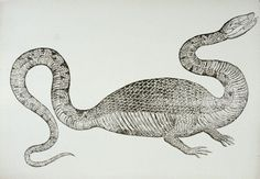 Two legged dragon (believed captured in countryside near Bologna in 1572.)