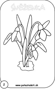 vlčí máky kresba - Hledat Googlem Printable Flower Coloring Pages, Coloring Pages For Kids, Coloring Books, Colorful Flowers, Spring Flowers, Line Drawing, Painting & Drawing, Tulip Colors, Stained Glass Quilt