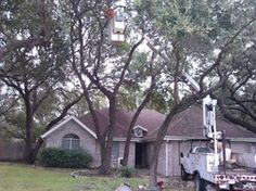 Wimberley Tree Service, Tree Trimming and Tree Care in Wimberley TX  http://texastreeservice.org/wimberley.html