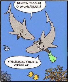 Eşantiyon  Shark Köpekbalığı  Dramatik komik karikatür