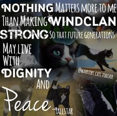 """""""Nothing matters more to me than making WindClan strong so that future generations may live with dignity and peace,"""" - Tallstar of WindClan Warrior Cats Quotes, Warrior Cats Series, Warrior Cats Books, Cat Quotes, Love Warriors, I Still Love Him, Cat Drawing, Cat Memes, My Best Friend"""