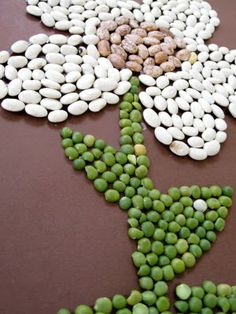 Bean Art--Keeps Kids Busy For Hours! have lucas glue down pieces Diy And Crafts, Crafts For Kids, Arts And Crafts, Projects For Kids, Art Projects, Seed Craft, Camping Crafts, Preschool Art, Nature Crafts