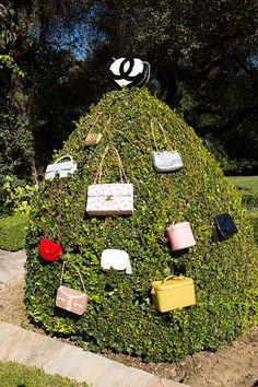 A Purse Hedge! I want a purse hedge!!!