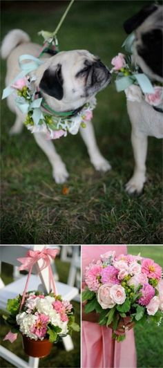 No wedding is complete without a few pugs...