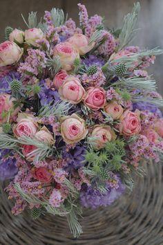 Beautiful Flowers, Beautiful Places, Cactus Plants, Cacti, Planting Flowers, Floral Arrangements, Floral Wreath, Birthdays, Wreaths