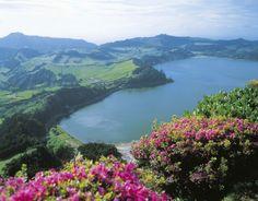 Furnas lake (S Miguel island)
