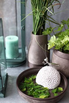 Kollektion Frühjahr & Sommer 2016 - Fachgroßhandel für Floristikbedarf, Deko & Wohnaccessoires Planter Pots, Jar, Home Decor, Spring Summer, Home Accessories, Deko, Interior Design, Home Interiors, Decoration Home