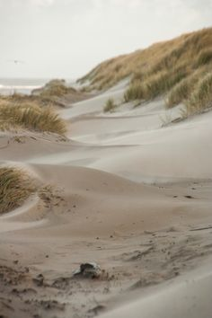 Sandy dunes on Vlieland - picture made by Bart Lebesque