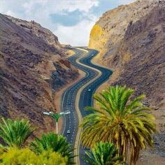 Najran - Saudi Arabia