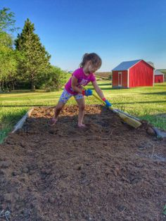 Gardening in a raised bed. She sweeps!