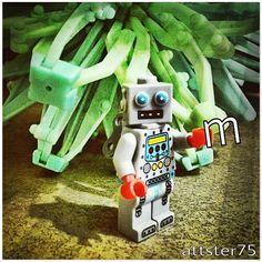 "27 Likes, 6 Comments - Matthew (@mattster75) on Instagram: ""LEGOBOT. #legominifigures #lego #minifigures #robot #toyphotography #toystagram"""