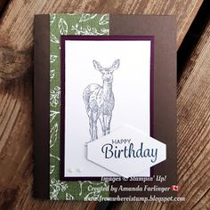 From Where I Stamp: Onstage Swaps St Lawrence College, Birthday Cards, Happy Birthday, Men's Cards, Holiday Photos, My Stamp, Creative Cards, I Card, Scrapbook Pages