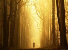 The Deathly Hallows by Nelleke on DeviantArt