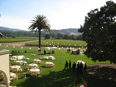 Chateau St Jean - Sonoma Valley  Front Lawn for small gatherings