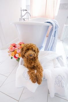 Where to buy the cutest monogram towels for your bathroom | Rhyme & Reason