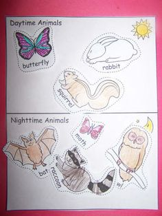 Nocturnal Animals Worksheets | shannon wrote about a daytime nighttime animal cut n paste