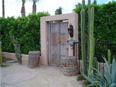 Southwestern Landscaping Maureen Gilmer Morongo Valley, CA Yard Privacy, Privacy Landscaping, Landscaping Ideas, Ficus Hedge, Garden Mesh, Wind Break, Front Yard Fence, Front Yards, Busy Street