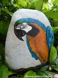 Le galet perroquet