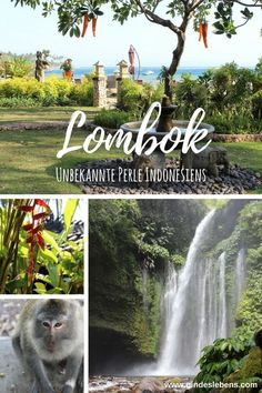 Lombok unknown pearl of Indonesia and alternative to Bali - Trend Holiday Popcorn 2020 Travel Abroad, Asia Travel, Solo Travel, Time Travel, Places To Travel, Travel Destinations, Indonesia Destinations, Travel Tips, Bali Lombok