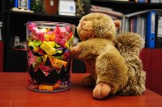 Squirrly Candies Jar, Pinterest. Squirrly, How do you blog