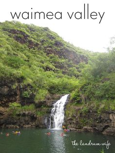 Waimea Valley: a nice hike through a botanical forest leads to a waterfall that you can go swimming in