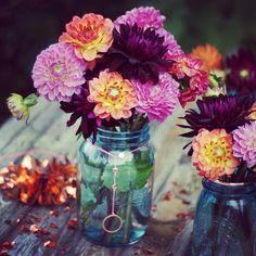 .@dramaqueenatwork   B wie Blumen für #abcfee. Dahlien für die #2flowergirls @Inga Lorig   glomerylane und @Mad...