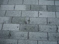Identifying Roofs that can be Saved