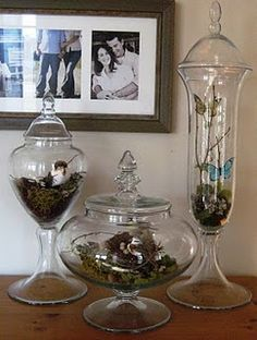 spring decor for glass jars. Love the butterfly one for my room. Need to be red butterflys though Bottles And Jars, Glass Jars, Mason Jars, Perfume Bottles, Glass Containers, Glass Domes, Apothecary Jars Decor, Jar Fillers, The Bell Jar