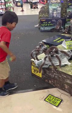 You have to click on the gif button to see what happens. Funny and a little bit cruel.