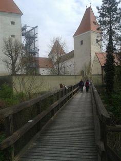 Národný park Dunajské luhy (Nationalpark Donau-Auen) sa tiahne od Viedne až po Bratislavu. Zamok Orth