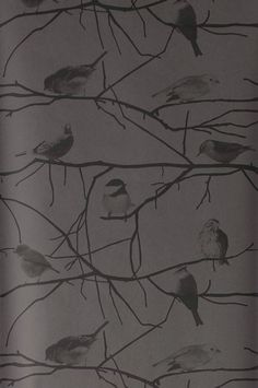 Birds on Branches -tapetti