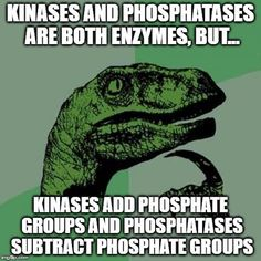 MCAT Biochemistry tip on Kinases and phosphatases. For your copy of our MCAT Biochemistry Review Summary or cheat sheet, click on the image.