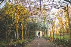 engaged couple on their pre-wedding photo shoot standing at the bottom of an overgrown tunnel at Pembroke Lodge Maria Assia Photography Pembroke Lodge, Richmond Park, Lodge Wedding, Beautiful Places In The World, Couple Shoot, Wedding Photoshoot, Engagement Couple, Hedges, Countryside