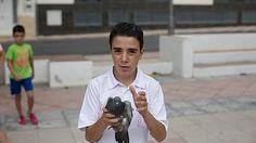Free´s - Periodismo Urgente: Caso Avilés: mañana puede ser demasiado tarde.