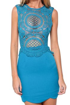 Is this s great place to shop? Lace Embroidered  Bodycon Dress