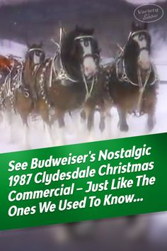 This is the Christmas many of us remember from the Budweiser's classic Christmas commercial ticks all the boxes: Nostalgia, Clydesdale horses, snow, and a cozy fireplace. Best Christmas Music, Christmas Videos, Christmas Movies, Christmas Time, Majestic Horse, Beautiful Horses, Clydesdale Horses Budweiser, Budweiser Commercial, Horse Videos