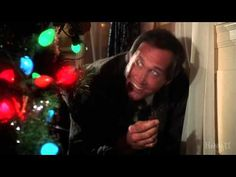 12 different movies was used for this mash-up:    The Nightmare Before Christmas  Home Alone 1 and 2  National Lampoon's Christmas Vacation  Scrooged  Elf  Bad Santa  A christmas Story  A christmas Carol  Pee Wee Herman's Christmas special (TV)  It's a Wonderful life  How the grinch stole christmas    Merrry Christmas & A Happy New Year! Christmas Vacation Movie, Christmas Trivia, Why Christmas, Grinch Stole Christmas, A Christmas Story, Christmas Carol, Christmas Movies, Christmas Specials, Home Alone 1