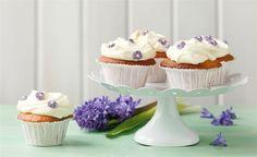 Finis Feinstes - Rezepte - Fini´s Rezepte - Kokos-Cupcakes