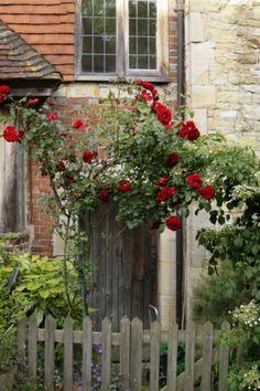enchantedengland:    Penshurst, Kent. (adamswaine flickr)