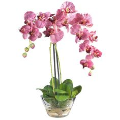 Fabulous silk double purple Phalaenopsis Orchid acrylic water arrangement in class vase from ExcellentSilkFlowers.com.