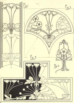 Buttercup, plate XVIII from Nature drawing and design, by Frank Steeley, publisher : G. W. Bacon and Co, London, 1904