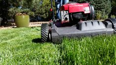 Five Things Your Can Do NOW for a Great Lawn Next Season!