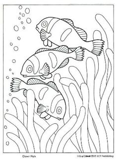 Clown Fish Coloring Page Elegant Clown Fish Coloring Ocean Animal Coloring Pages Ocean Coloring Pages, Fish Coloring Page, Animal Coloring Pages, Coloring Book Pages, Coloring Pages For Kids, Coloring Sheets, Mosaic Animals, Fish Art, Mosaic Patterns