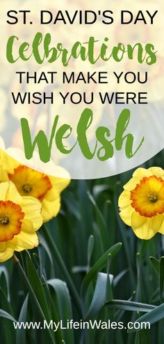 Happy Saint David's Day! Do you know who the patron saint of Wales is? What wearing leeks & daffodils mean? Or what food, activities or celebrations to have on Saint David's Day? National Flower Of Wales, Best Of Wales, Inspirational Mottos, Wales Flag, Stuff To Do, Things To Do, Saint David's Day, Christian Missionary, North Wales