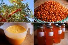 RAKYTNÍKOVÝ SIRUP Sweet Recipes, Healthy Recipes, Dieta Detox, Juicing For Health, Food Club, Beverages, Drinks, Natural Medicine, Natural Remedies
