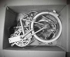 Box Bike Bickerton
