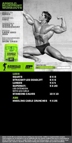Arnold build your chest and back mp workout pinterest workout arnold phase 2 malvernweather Choice Image
